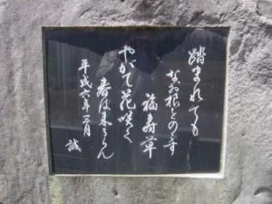 gunma-toro_4