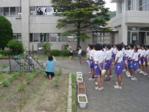 fukui-ninomiya_5